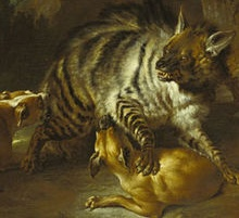 Hyäne tötet Haushund