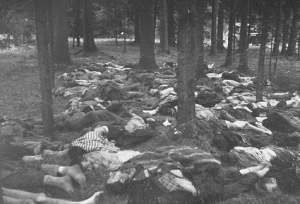 110 Nazi Mordung in Russland